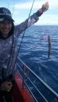 ให้เช่าเรือตกหมึก เรือตกปลา ชุมพร