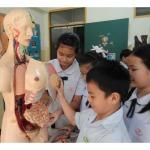 ฝึกฝนและพัฒนาทักษะให้กับเด็ก - โรงเรียนกุมุทมาส