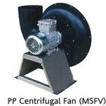 Fan International Co Ltd