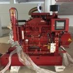 Reddy Buffaloes Pump (Thailand) Ltd