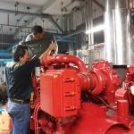 บริการซ่อมปั้มดับเพลิง - บริการซ่อมและเครื่องสูบน้ำปั๊มดับเพลิง เรดดี้บัฟฟาโลส์
