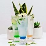 ไซรัปผสมเครื่องดื่ม - บริษัท อินดัสเทรียล ฟู้ด ซัพพลาย จำกัด
