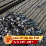 Dragon Steel Co., Ltd.
