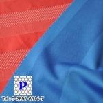 ผ้ายืดชุดกีฬา  - โรงงานผลิตผ้าตาข่าย แพนเท็กซ์ไทล์