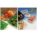 Rigid PVC Films for Foodstuff Packaging - บริษัท เบสิกส์ มาร์เก็ตติ้ง จำกัด