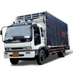 I P D Transport & Import Export Co Ltd