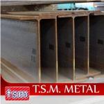 เหล็กไวด์แฟรงค์ Wide Flange  - เหล็กรูปพรรณ สมุทรปราการ TSM