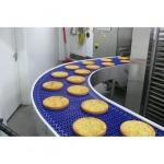 เครื่องลำเลียงอาหาร - ระบบคอนเวเยอร์ เอส เอส เอส เอ็นจิเนียริ่ง แอนด์ เซอร์วิส