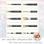Rienthong Electric LP