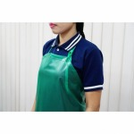The company sells plastic aprons. - P CHEM & TEXT LP