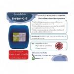 น้ำยาฆ่าเชื้อ อีโวแซน-คิว 15 - บริษัท แอ๊ดวานซ์ไทซิ่ง เซอร์วิส (ประเทศไทย) จำกัด