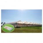 Green House Green House Nonthaburi - P V T And T Plas Co Ltd