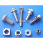 สกรูพิเศษ - Special screw 1 - บริษัท ที ซี สกรูน๊อต อินดัสทรี จำกัด