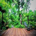 แบบจัดสวนหน้าบ้าน กรุงเทพฯ - บริการจัดสวน พนา 1000 เมืองต้นไม้ กรุงเทพฯ