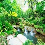 การจัดสวนรอบบ้าน กรุงเทพฯ - บริการจัดสวน พนา 1000 เมืองต้นไม้ กรุงเทพฯ