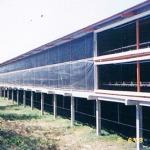 ฟาร์มระบบปิด - ฟาร์ม EVAP ที โปร อินเตอร์เนชั่นแนล