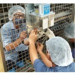 Installation of an automatic lubrication system - Autolub System Engineering (Thailand) Co., Ltd.
