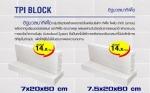 อิฐมวลเบาทีพีไอ TPI BLOCK - บริษัท ไทยฟลอเรนซ์วัสดุภัณฑ์ จำกัด
