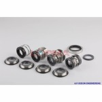 Mechanical seal - A.P. Vision Engineering Co Ltd