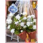 ดอกไม้พลาสติก อุบลราชธานี - เครื่องสังฆภัณฑ์ อุบล วารินธรรมภัณฑ์