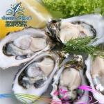 เมนูหอย ช่องเขาซีฟู๊ดส์ - ร้านอาหาร ช่องเขาซีฟู๊ดส์ หาดใหญ่