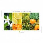 หัวน้ำหอมใส่โคโลญจน์-Colognes Collection  - หัวเชื้อน้ำหอม เอฟ ที ฟราแกรนซ์ - ฟลอร์เอสเซนต์ (ไทยแลนด์)
