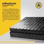 T N L Steel Co Ltd