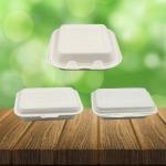 โรงงานผลิตกล่องอาหาร - รับผลิตบรรจุภัณฑ์อาหาร  U Pack Green Vision