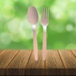 ชุดช้อนส้อมพลาสติก พรีเมี่ยม - รับผลิตบรรจุภัณฑ์อาหาร  U Pack Green Vision