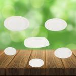 รับผลิต ช้อนปลายซ่อม - รับผลิตบรรจุภัณฑ์อาหาร  U Pack Green Vision
