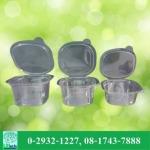 กล่องบรรจุภัณฑ์พลาสติก - รับผลิตบรรจุภัณฑ์อาหาร  U Pack Green Vision