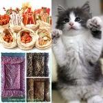 อาหารและอุปกรณ์ดูแลสัตว์ - โรงพยาบาลสัตว์สุราษฎร์ธานี