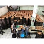 Bangkok Eggs Shop - Nichakamol Khaisod