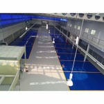 Showroom floor - Epoxy-T T R Epicon (Thailand)