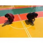 รับตีเส้นพื้นสนามกีฬา - ผู้รับเหมาติดตั้งพื้นอีพ็อกซี่ พื้นพียู ที ที อาร์ อิพิคอล (ไทยแลนด์)