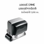 มอเตอร์ประตูรั้วรีโมท CAME บุรีรัมย์ - จิวฮงล้ง ประตูชัตเตอร์ บุรีรัมย์