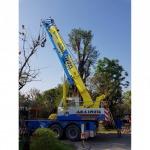 รับขนย้ายต้นไม้ใหญ่ - รถเครนรับจ้าง ขนส่งต้นไม้ เอ แอนด์ เอ เครน