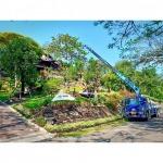 บริการรับจัดสวน - รถเครนรับจ้าง ขนส่งต้นไม้ เอ แอนด์ เอ เครน