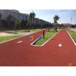 พื้นลู่วิ่ง-ลานกีฬา Synthetic มาตรฐาน IAAF, ลู่วิ่งยางสังเคราะห์ออกกำลังกาย - บารมี คัลเลอร์ เฟล็กซ์ (Barame Color Flake)