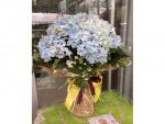 รับจัดแจกันดอกไม้ - รับจัดดอกไม้ภูเก็ต โรซ่า โรส
