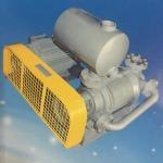 Rotary vane vacuum pumps - บริษัท เอเซีย ปั๊ม เอ็นจิเนียริ่ง จำกัด