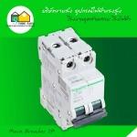 Main Breaker 2P - Store Faifa Co Ltd