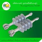 ลูกถ้วยแขวนโพลีเมอร์ (Polymer Composite Insulator) - อุปกรณ์ไฟฟ้าแรงสูง สโตร์ไฟฟ้า