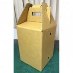 รับผลิตกล่องใส่ทุเรียน - โรงงานผลิตกล่องกระดาษลูกฟูก - อินเตอร์ กรีน กรุ๊ป (1994)