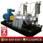 ปั๊มมัลติสเตจ Petrochemical - ปั๊มอุตสาหกรรม ฟลุคส์ ชเป็ค