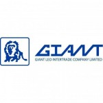 Aluminum and stainless steel cleaners - Giant Leo Intertrade Co Ltd