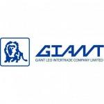 Metal polishers - Giant Leo Intertrade Co Ltd