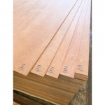 Double-faced polished plywood plywood - chat inter thai plywood co., ltd.