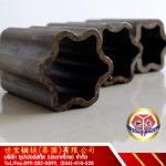 รับผลิตเหล็กรูปร่างพิเศษ - ท่อเหล็กไร้ตะเข็บ ซุปเปอร์สตีล (ประเทศไทย)