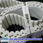 Timing Belt PU - บริษัท ศูนย์รวมสายพานอุตสาหกรรมไทย จำกัด